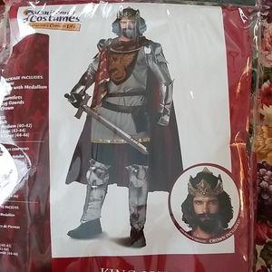 King Arthur Halloween costume